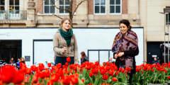 Amsterdam's 90 minutes Kickstart Tour