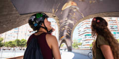 Madrid by Bike: The Local Way