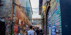 Urban Jungle: The Alternative Side