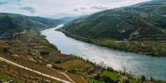 Day Trip Through the Enchanting Douro Valley