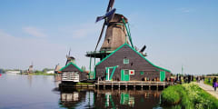 Windmills, Cheese & Traditions: Zaanse Schans Tour
