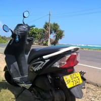 Stunning Scooter Ride along Southern Coast