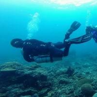 Discover Scuba Diving in Anilao Batangas Marine Park