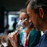 Azeitão Wine Tour