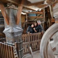 Zaanse Schans Windmills Tour