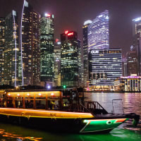 Magical Singapore by Night Tour