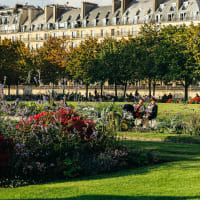 I spy with my little eye: Paris Highlights for Kids