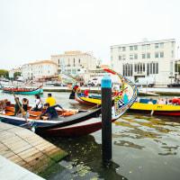 A Beautiful Day Trip: Aveiro, Mealhada & Coimbra.