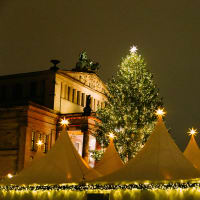 Christmas Markets & Highlights with a Local