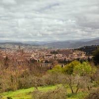 Private Vespa Tour in Florence and Chianti