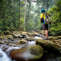 Trekking Experience in the Hidden Pinnacle