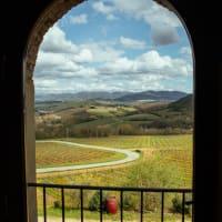 Scenic Private Day Trip to San Gimignano