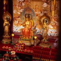 Buddha Experience: Meditation, Monks & Food