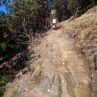 Kalinchowk Hike