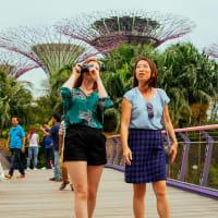 Singapore's Famous Sights & Secrets Tour