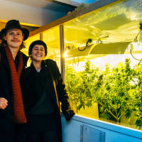 Discover the Amsterdam Coffeeshops!