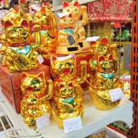 Visit Multicultural Markets in Bangkok