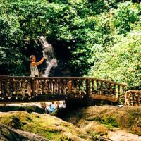 Magical Waterfall & Jungle Trek Experience