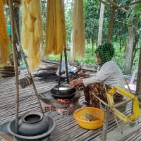 Silk Island Tour With Great Food & Lots To Do
