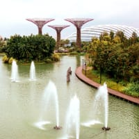 Gardens By The Bay Tour