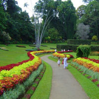 Private Kandy Day Tour
