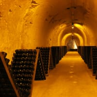 VIP Day Trip to Champagne with a Wine Expert