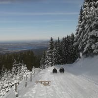 South Bavarian Foothills Experience