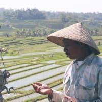SUBAK JATILUWIH - Walk with Farmers!