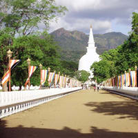 Full Day Experience to Sacred Mahiyanganaya