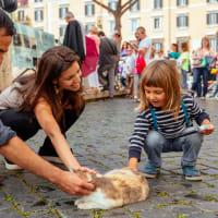 Treasure Hunt at Pompeii