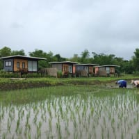 2 Days Farming Workshop and Home Cooking