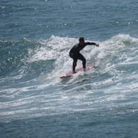 Surf Up! - Private Surfing Class with a Pro