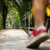 The Beautiful Green Lung of Bangkok: Bike Tour