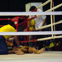 Watch Muay Thai (Thai Boxing) at the Local Stadium
