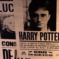 London's Magical Harry Potter Tour