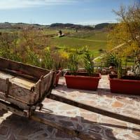 Beautiful Countryside Day Trip: Castelli Romani