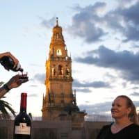 Córdoba Terrace & local's tapas tour adventure