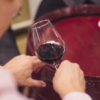 Wine Pairing experience with a Sommelier