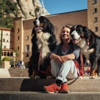 Private Day Trip: Discover the Magic of Montserrat