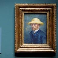 Van Gogh's Life & Masterpieces Tour