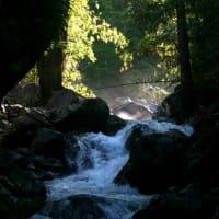 Trekking The Ancient Gateway to Mt. Kinabalu