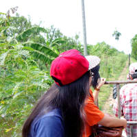 Countryside Canal Tour