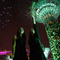 Singapore's Famous Sights & Secrets Tour
