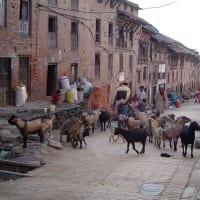 The best of the kathmandu Valley