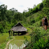 Soft Trekking at Mae Klang Luang Village