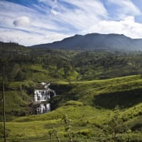 Private Day Tour - Kandy to Nuwara Eliya