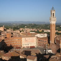 A Day Trip Back in Time in Siena with a Local