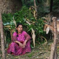 Explore actual Nepal - Phaskot