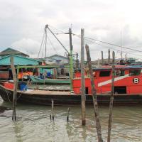 Incredible Crab Island & Royal Town of Klang Tour