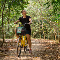The Beautiful Green Lung of Bangkok: Bike Tour